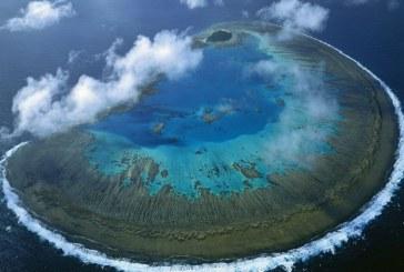 Ученые: Большому Барьерному рифу грозит разрушение из-за повышения температуры воды