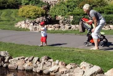 Ученые: комнатные растения и прогулки в парке могут снизить риск ранней смерти