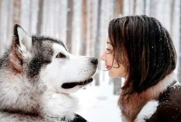 Ученые: сердца собак и их владельцев бьются в унисон
