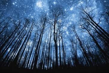 5 мая над Москвой пройдет звездный дождь