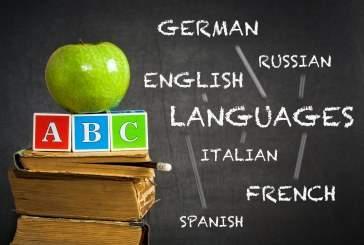 Биологи научились оценивать способность к языкам по мозговой активности