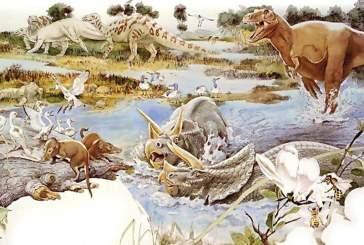 Ученые доказали, что расцвет млекопитающих начался задолго до вымирания динозавров