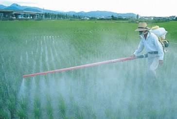 Европейская комиссия пока не решилась на запрет использования гербицида, который провоцирует рак