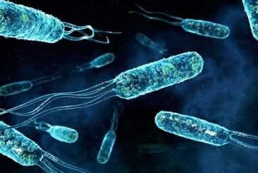 Ученые восстановили фермент древнейших бактерий