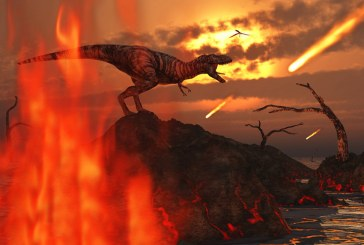 Вместе с динозаврами от астероида погибли почти все млекопитающие