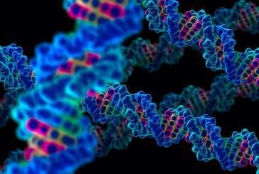 В США ученые меняют геном человека для борьбы с раком
