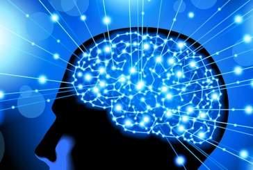 Ученые смогли объяснить способность мозга к предвидению