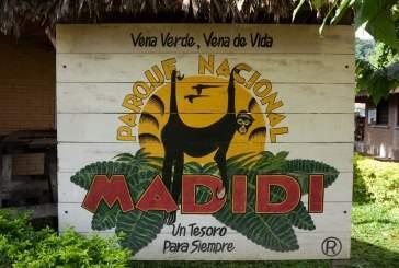 Парк Мадиди: красота и опасность берегов Амазонки