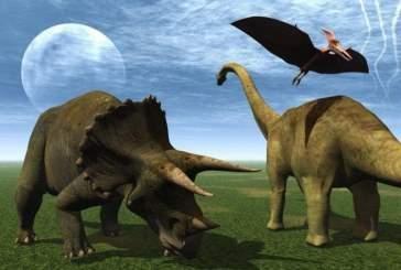 Динозавры жили стаями, словно современные птицы