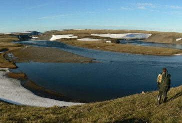 Ученые предлагают создать национальный парк на полуострове Таймыр