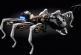 Ученые приступили к созданию роботов-животных