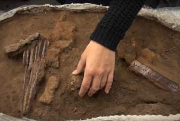 В Дании нашли самый древний набор инструментов викингов