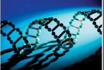 Ученые Якутии открыли новое опасное генетическое заболевание