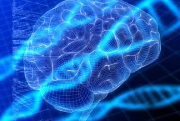 Ученые создадут мозг с помощью 3D печати