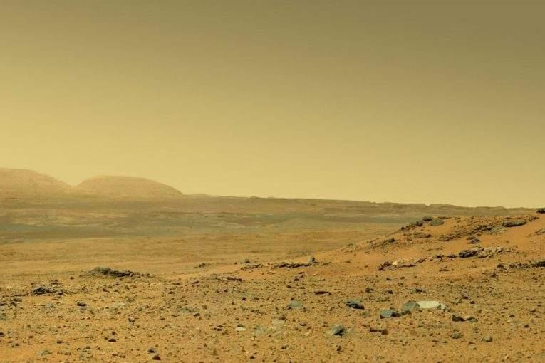 Уфолог отыскал  наповерхности Марса окаменелости червей