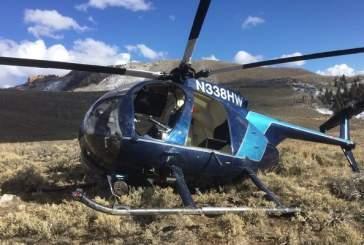 В США разбился вертолет из-за столкновения с лосем