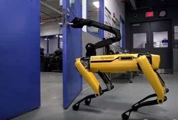 Опубликовано видео с открывающим дверь роботом-собакой Boston Dynamics