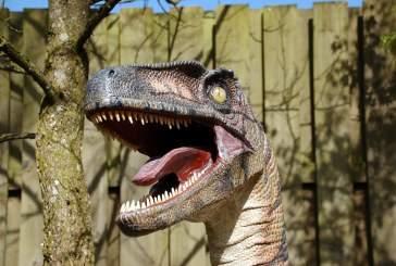 В центре полетов NASA обнаружены следы сотен динозавров
