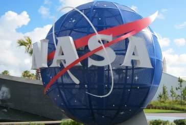 Специалисты NASA считают плесень ключом к поиску внеземной жизни