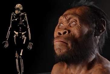 Ученые «оживили» древних людей, вымерших 300 тысяч лет назад