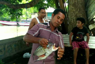 В Индонезии рыбаки запечатлели на видео рыбу-чудовище с человеческими зубами