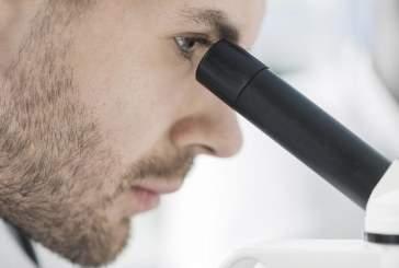Новый микроскоп показал работу клеток внутри организма в 3D
