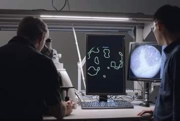 В Google разработали микроскоп для обнаружения раковых клеток