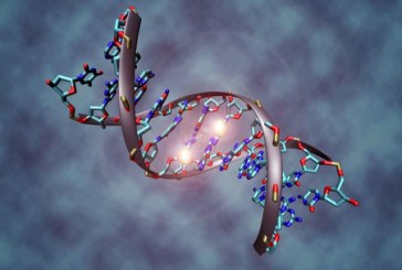Ученые: Узлы молекул ДНК можно распутать