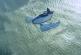 Стартап сооснователя Google представил одноместный летательный аппарат