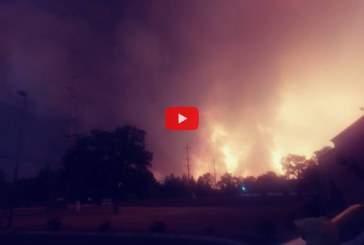 Видео: калифорниец вел хронику огненного торнадо и едва не погиб