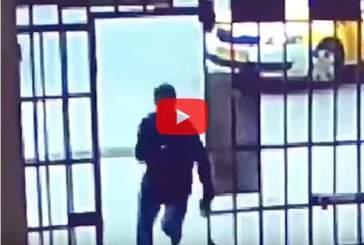 В Подмосковье задержали напавшего на полицейского у посольства Словакии мужчину