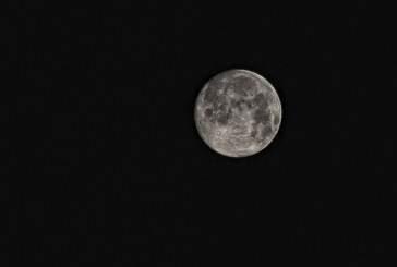 Ученые из Китая заселят Луну растениями и гусеницами