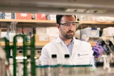 Ученые разработали классификацию микроглии