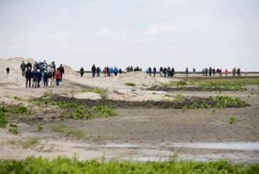 Голландцы построили искусственные острова для возвращения дикой природы
