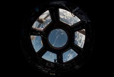 Россия впервые в истории напечатала миниорганы на МКС