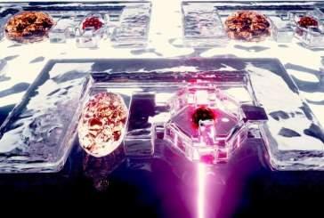 Ученые создали похожих на смолу роботов, способных предотвращать болезни