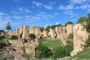 Ученые выяснили секрет успехов Карфагена в войнах с Римом