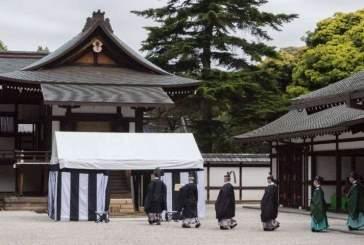 В Японии провели древнюю церемонию с использованием панцирей вымирающих черепах
