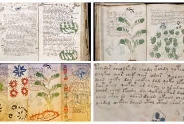 Британский ученый расшифровал загадочную рукопись Войнича