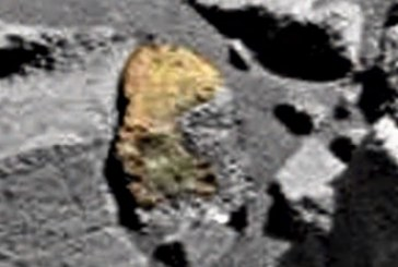 На Марсе обнаружили вырезанный в стене образ рептилии