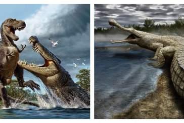 Найдены останки крокодила, охотившегося на динозавров
