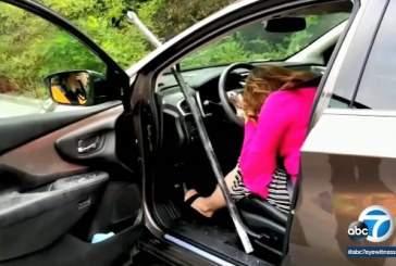 В США металлическая труба пробила лобовое стекло автомобиля с женщиной за рулем
