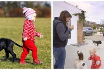 В Великобритании родители выдрессировали сына как собаку ради участия в телешоу