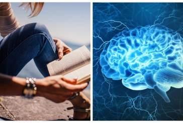 Ученые не обнаружили разницы во влиянии бумажных и аудиокниг на головной мозг
