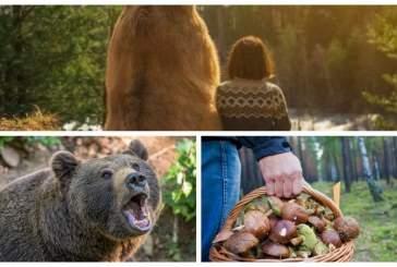 В Югре грибник бросил женщину в лесу наедине с медведем