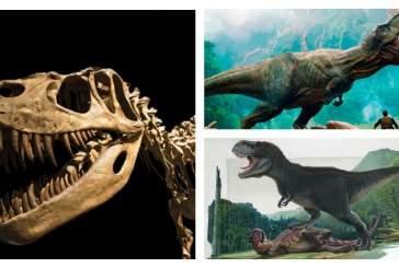 Названа сила укуса тираннозавра
