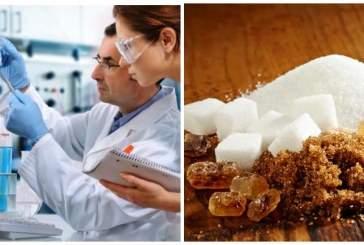 Учёные сообщили, что в наборе лишнего веса виноват «жидкий» сахар