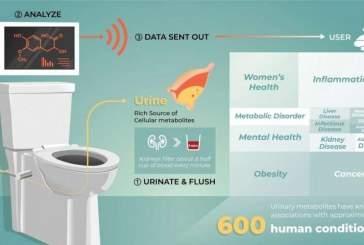Могут ли «умные туалеты» стать новым источником данных о здоровье?