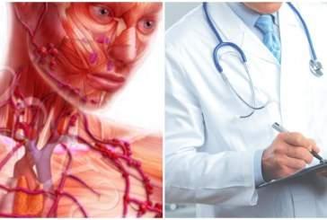 Названы шесть продуктов, вызывающие в организме хронические воспаления
