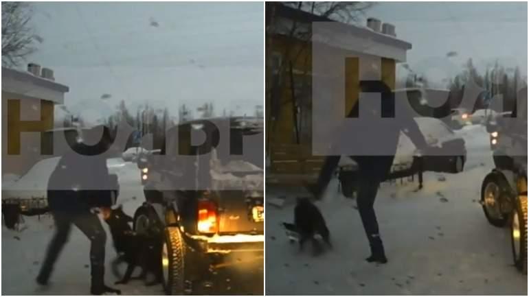 Житель Ямала «выгуливал» собаку, привязав ее к автомобилю
